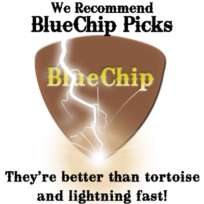 We recommend BlueChip Picks!